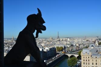 A Notre Dame Gargoyle, Summer 2016